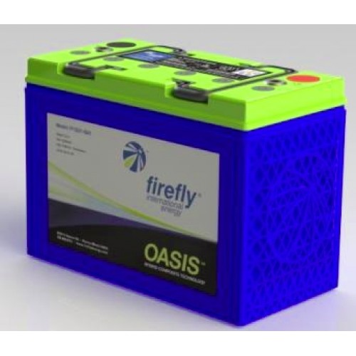 Flrefly Group 31 Battery